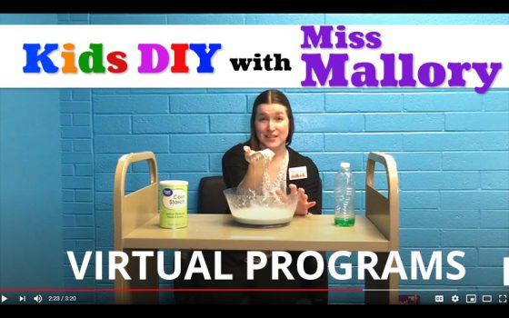 kids diy with miss mallory virtual programs